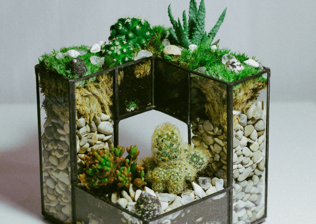 Красивые флорариумы