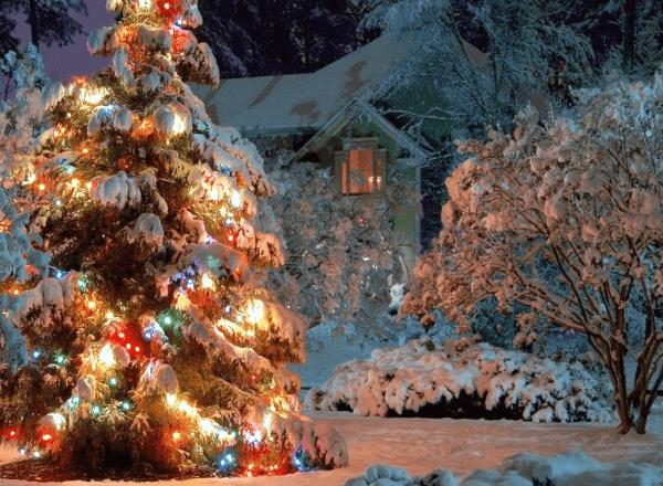 Украшение сада к новогодним праздникам