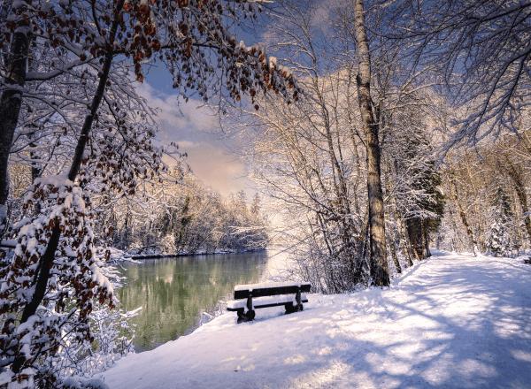 Календарь сезонных работ в саду: январь