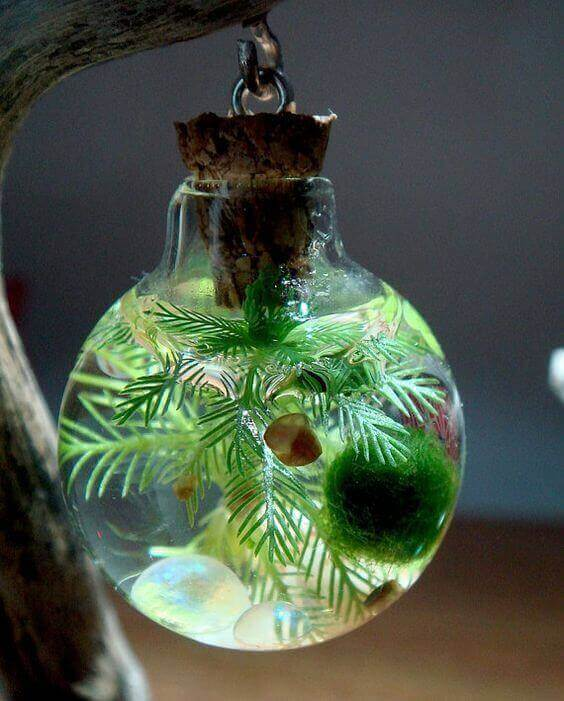 Подвесной пико-аквариум