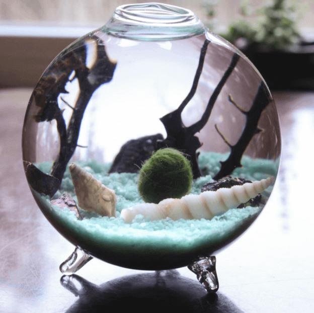 Мини-аквариумы с декором светящимся в темноте