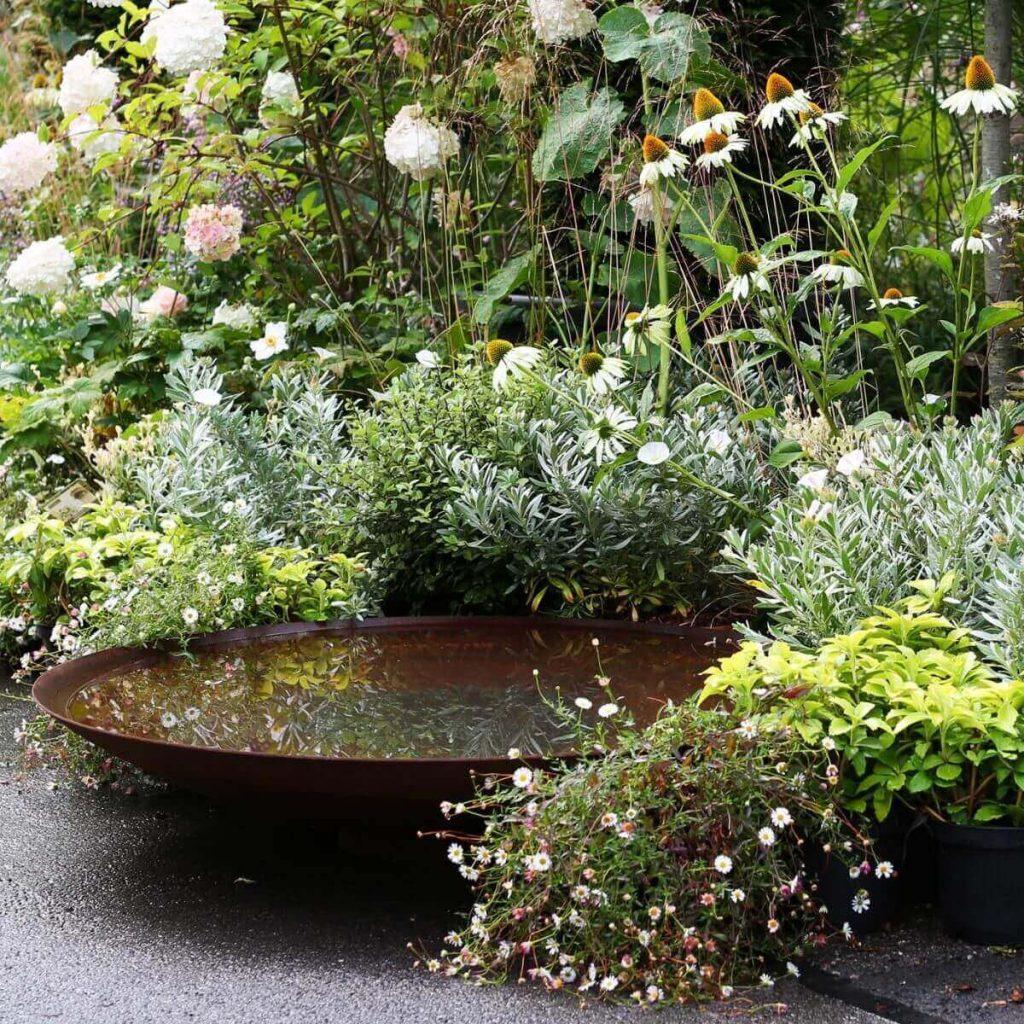 Водяные чаши в дизайне сада